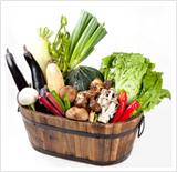 一般野菜の写真